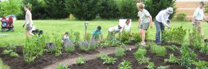 Crofton Village Garden Club