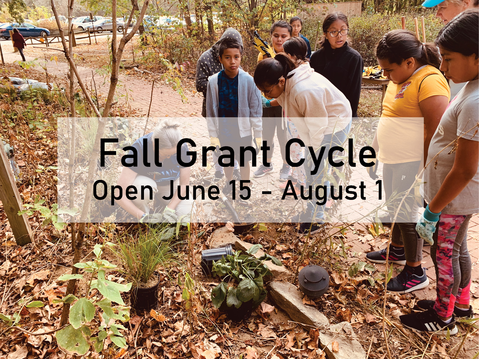 Learn about Grants & Projects