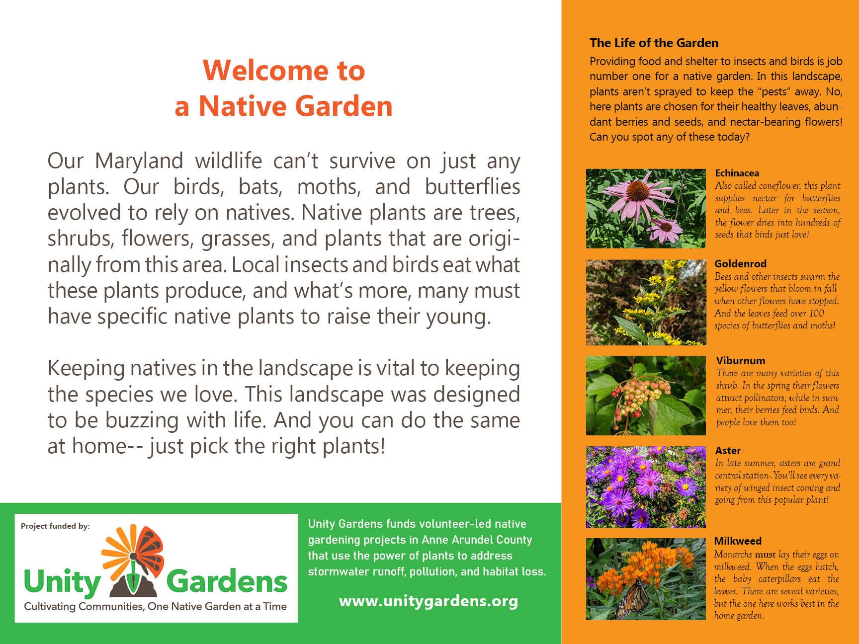 Welcome to a Native Garden